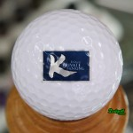 KGroup-Private-Ranking---Titleist-ProV1